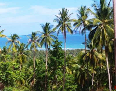 Sea view land – from 768 m² –1.950.000 THB